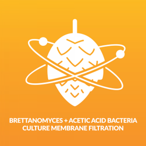 brettanomyces and acetic acid bacteria culture membrane filtration - Beer Brewing and Beer Testing Kit