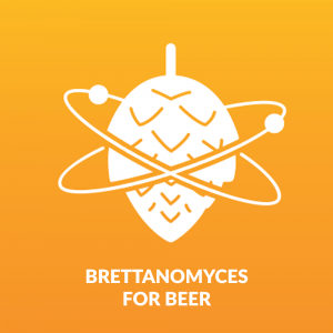 Brettanomyces - Beer Brewing and Beer Testing Kit