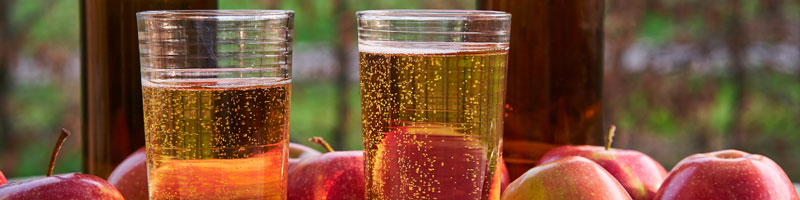 Apple cider in glasses