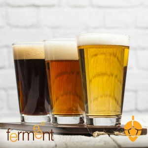 Flight of different beers for professional beer brewing equipment and testing